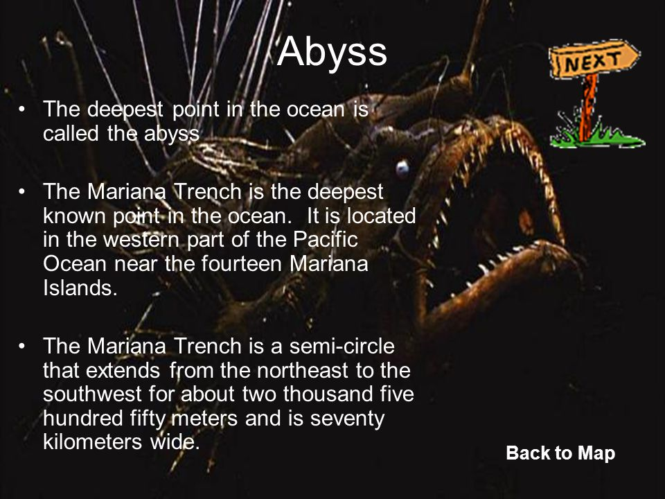 Abyss The deepest point in the ocean is called the abyss The Mariana Trench is the deepest known point in the ocean. It is located in the western part