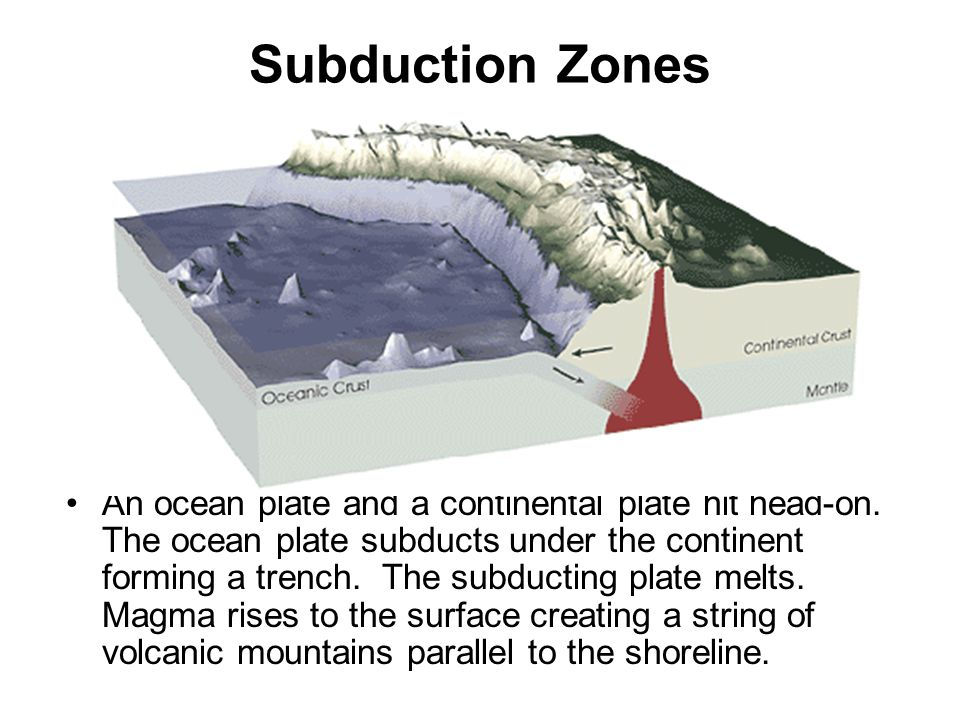Subduction Zones An ocean plate and a continental plate hit head-on.