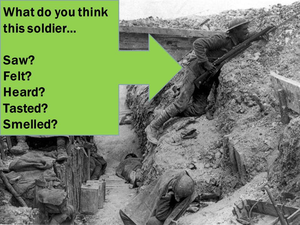 What do you think this soldier… Saw Felt Heard Tasted Smelled