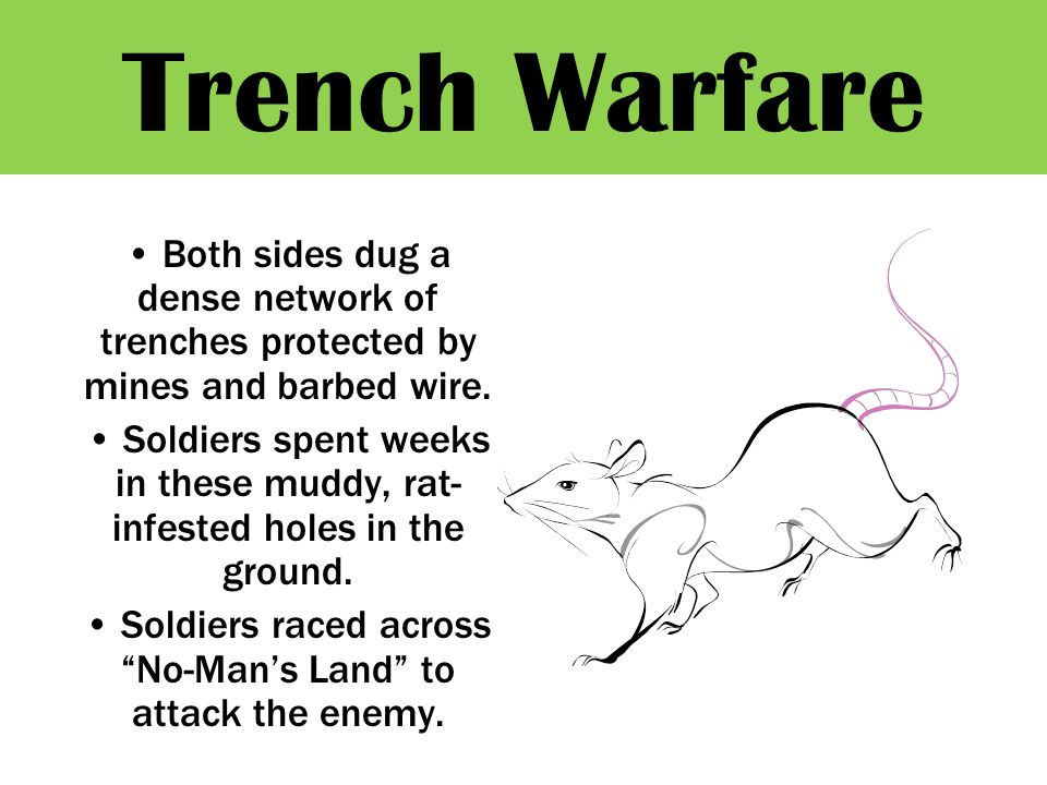 Trench Warfare Both sides dug a dense network of trenches protected by mines and barbed wire.