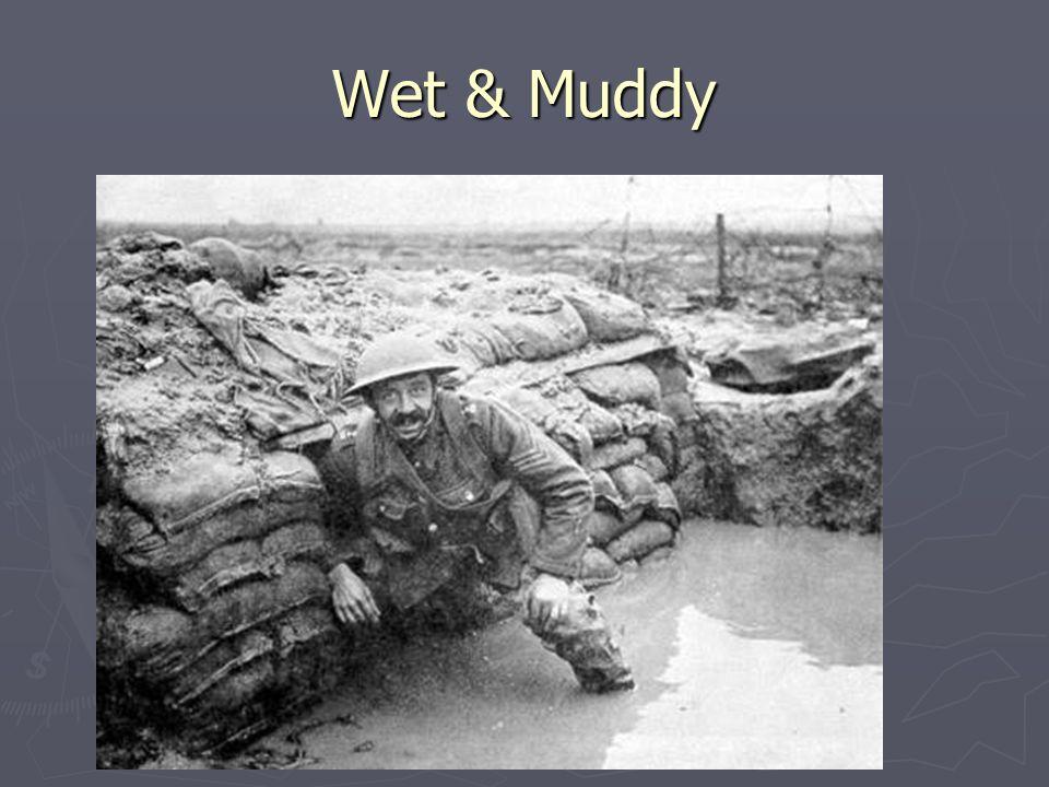 Wet & Muddy