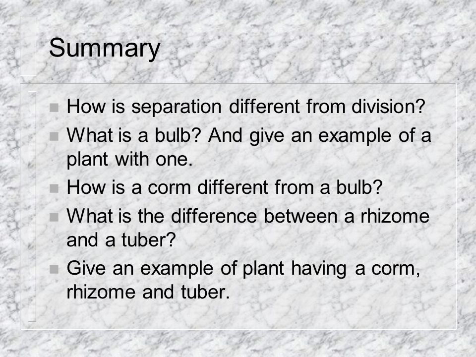 Summary n How is separation different from division.