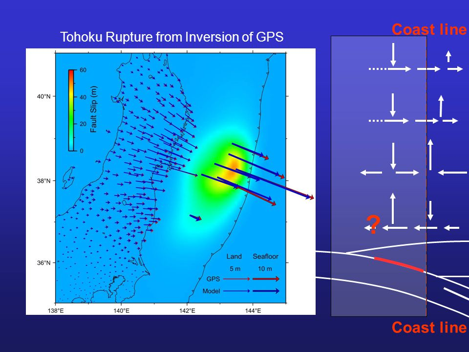 Co-seismic Coast line ? Tohoku Rupture from Inversion of GPS