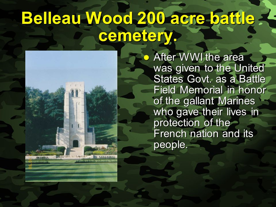 Slide 36 Belleau Wood 200 acre battle cemetery.