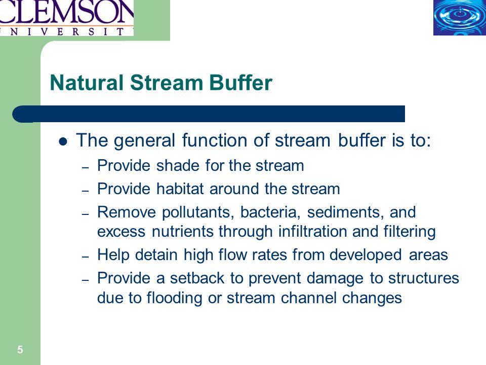 6 Natural Stream Buffer