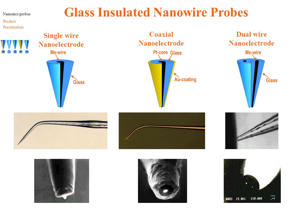 Glass Insulated Nanowire Probes Single wire Nanoelectrode Coaxial Nanoelectrode Dual wire Nanoelectrode Nanonics probes Product Presentation