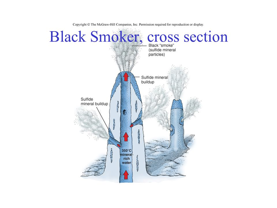Black Smoker, cross section