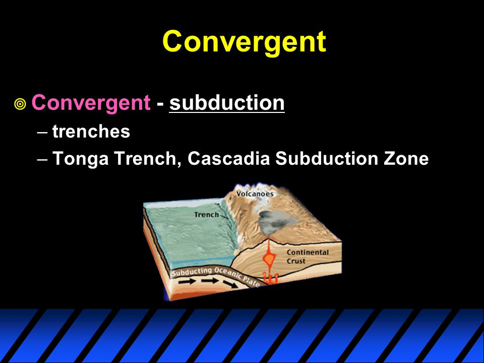 Convergent  Convergent - subduction –trenches –Tonga Trench, Cascadia Subduction Zone
