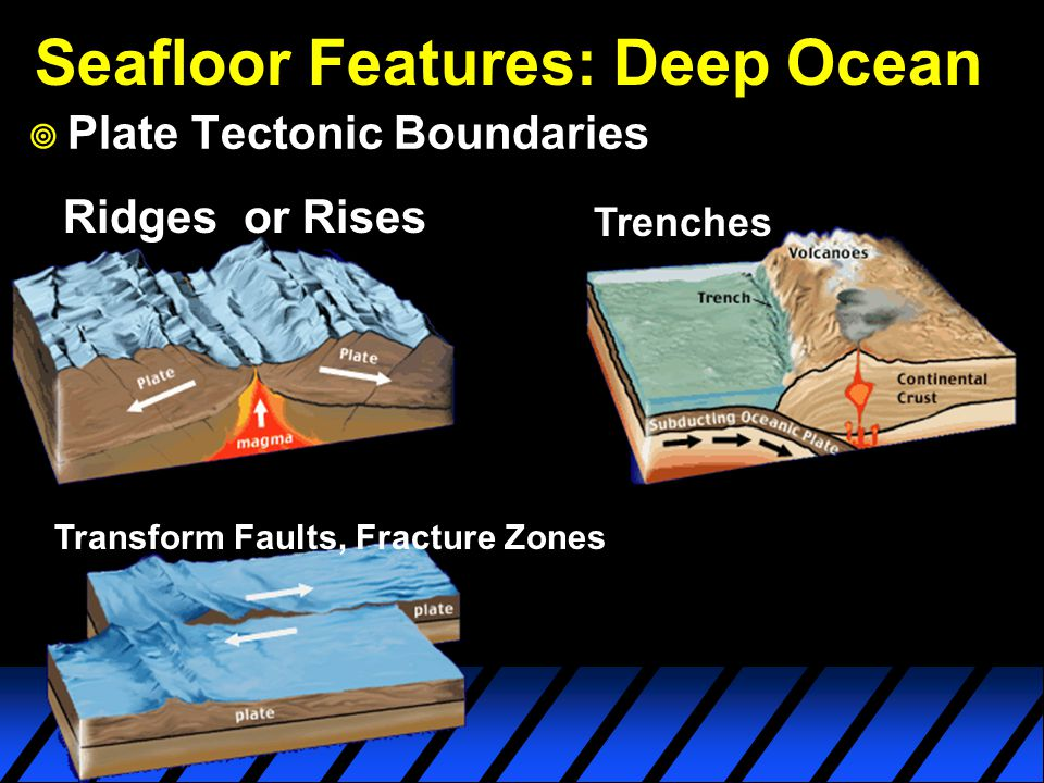 Seafloor Features: Deep Ocean  Plate Tectonic Boundaries Ridges or Rises Trenches Transform Faults, Fracture Zones