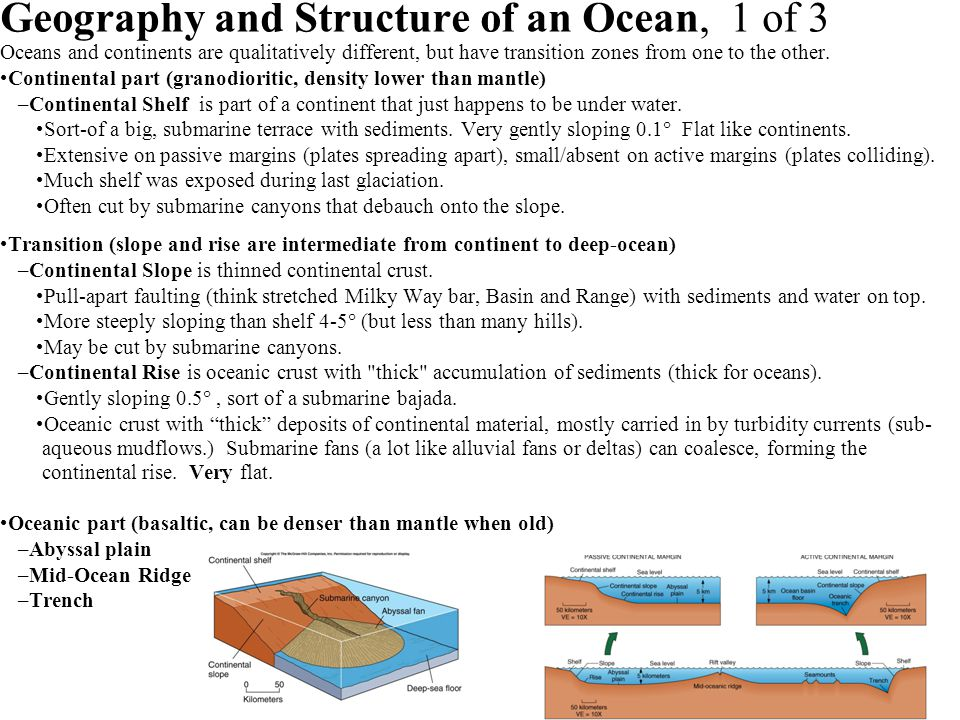 Geography and Structure of an Ocean, 1 of 3 Oceans and continents are qualitatively different, but have transition zones from one to the other. Contin