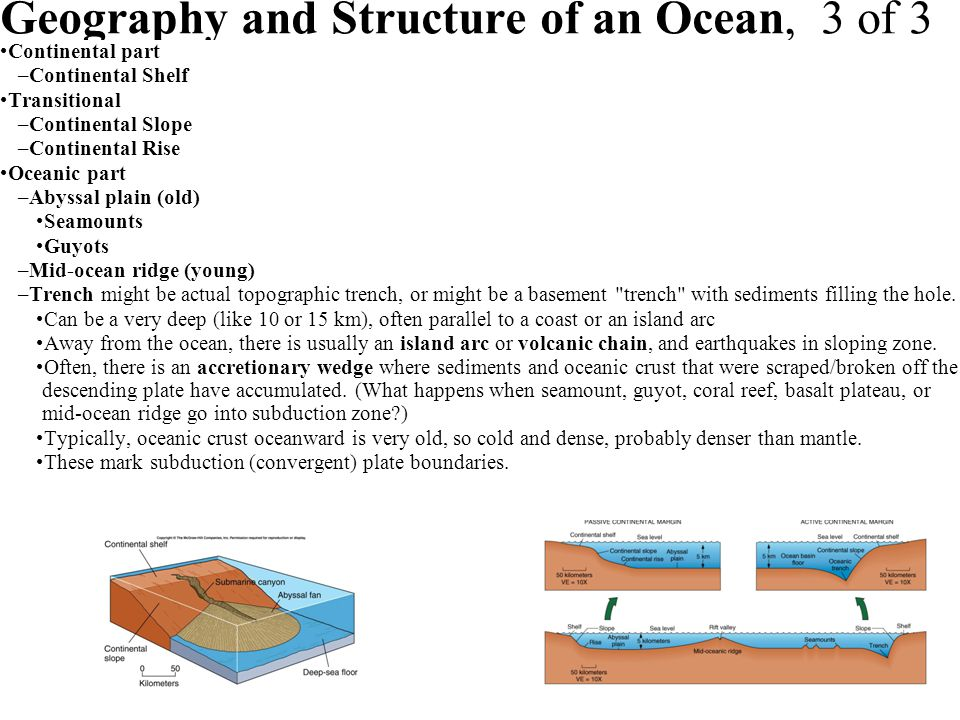 Geography and Structure of an Ocean, 3 of 3 Continental part –Continental Shelf Transitional –Continental Slope –Continental Rise Oceanic part –Abyssa