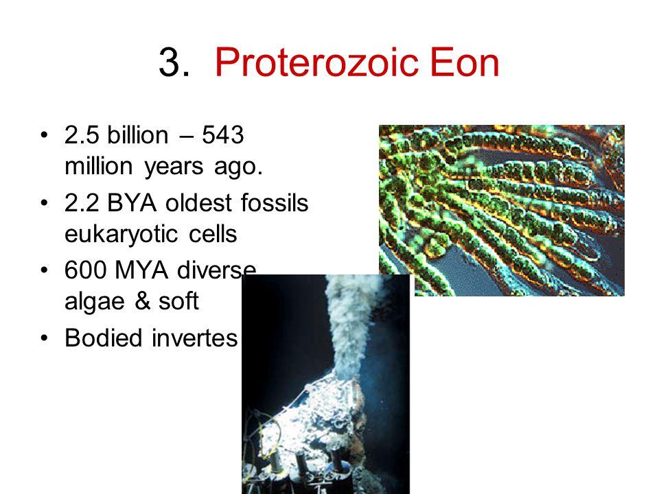 3.Proterozoic Eon 2.5 billion – 543 million years ago.