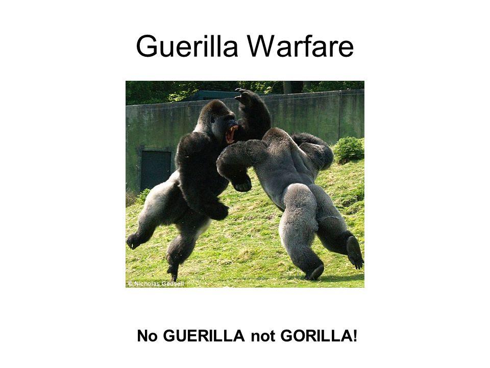 No GUERILLA not GORILLA!