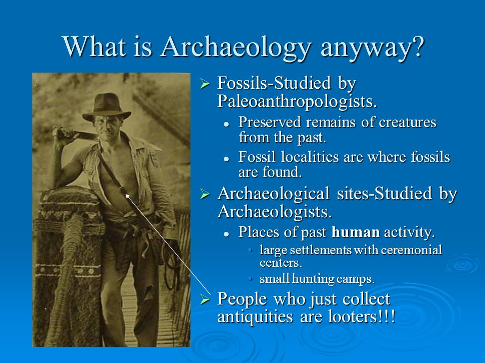 What is Archaeology anyway.  Fossils-Studied by Paleoanthropologists.