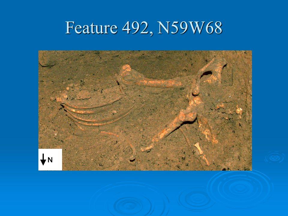 Feature 492, N59W68 N