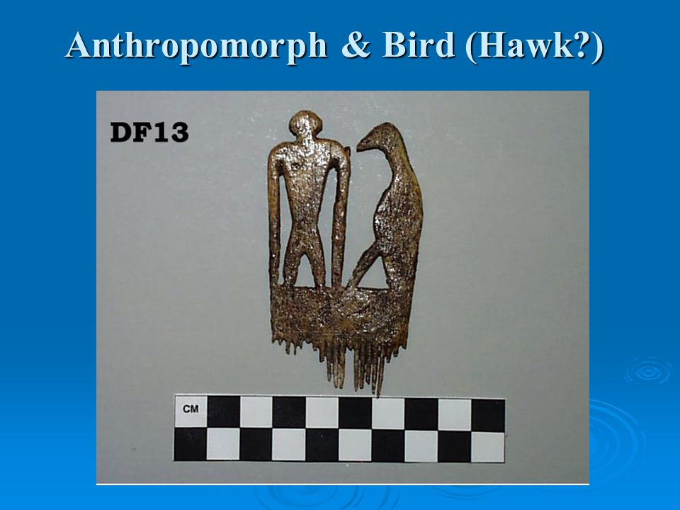 Anthropomorph & Bird (Hawk )