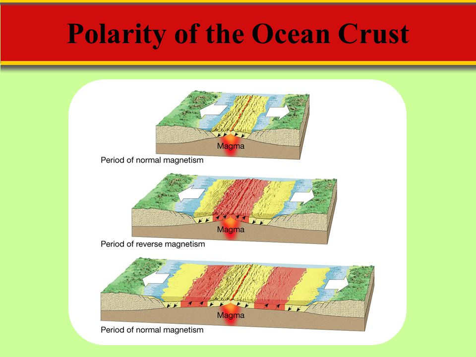 Polarity of the Ocean Crust