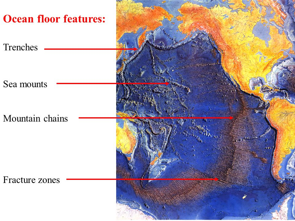 Ocean floor features: Trenches Mountain chains Sea mounts Fracture zones