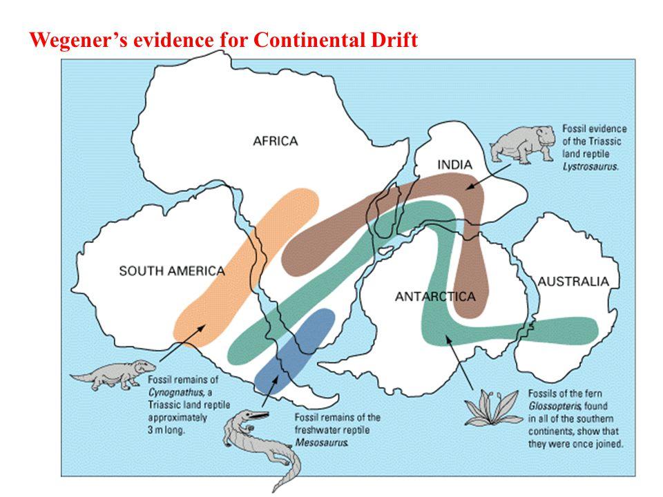 Wegener's evidence for Continental Drift