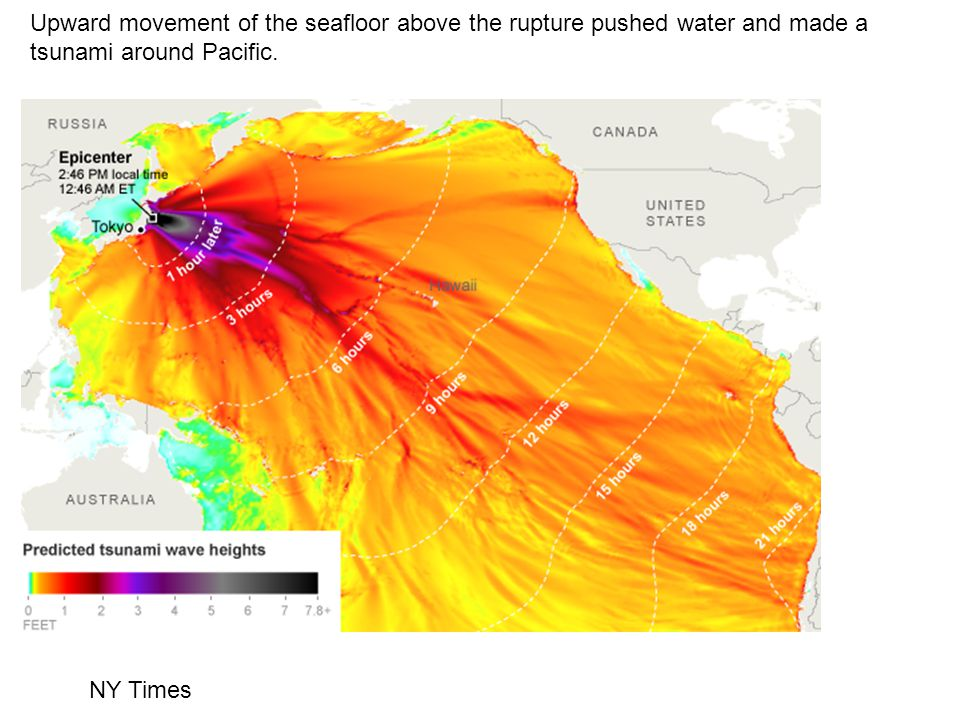 Upward movement of the seafloor above the rupture pushed water and made a tsunami around Pacific.