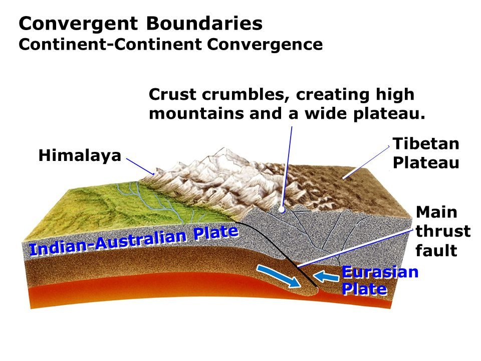Convergent Boundaries Continent-Continent Convergence Himalaya Main thrust fault Tibetan Plateau Indian-Australian Plate Eurasian Plate Eurasian Plate Crust crumbles, creating high mountains and a wide plateau.