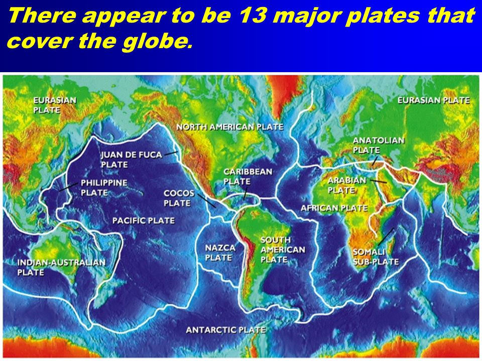 There appear to be 13 major plates that cover the globe.