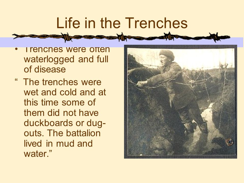 Life in the Trenches Trenches were often waterlogged and full of disease The trenches were wet and cold and at this time some of them did not have duckboards or dug- outs.