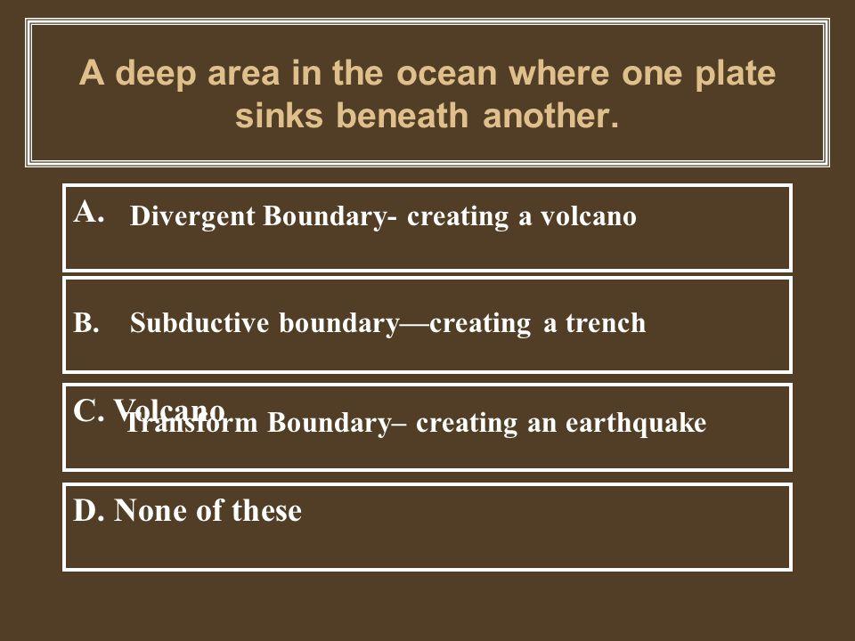 B. More dense