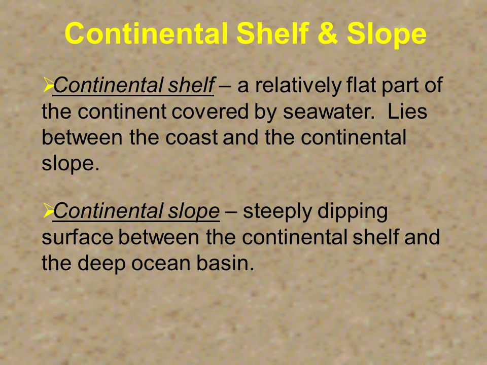 Topography of the Ocean Floor  Continental Shelf  Rift Zone  Seamount  Abyssal Plain  Continental Slope  Mid-Ocean Ridge  Ocean Trench  Submarine Canyon