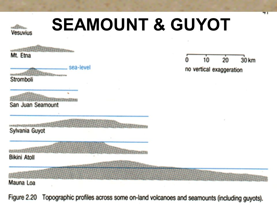 SEAMOUNT & GUYOT Isolated mountains rising from 3,000 to 10,000 feet above the surrounding seabed.