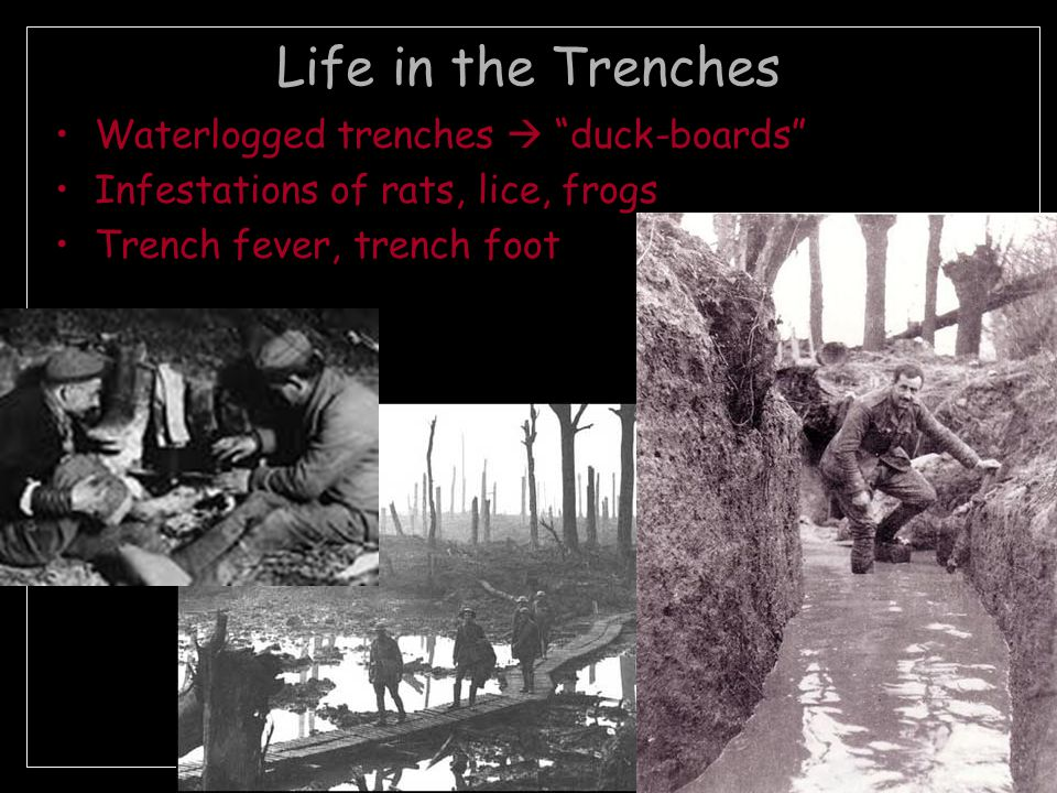 Life in the Trenches Rations of meat (canned beef), bread or biscuits, pea soup w/lumps of horsemeat Iron Rations – emergency supply used only w/permission from officer Contaminated H 2 0 = dysentery Lunch in the trenches at Fort Oglethorpe