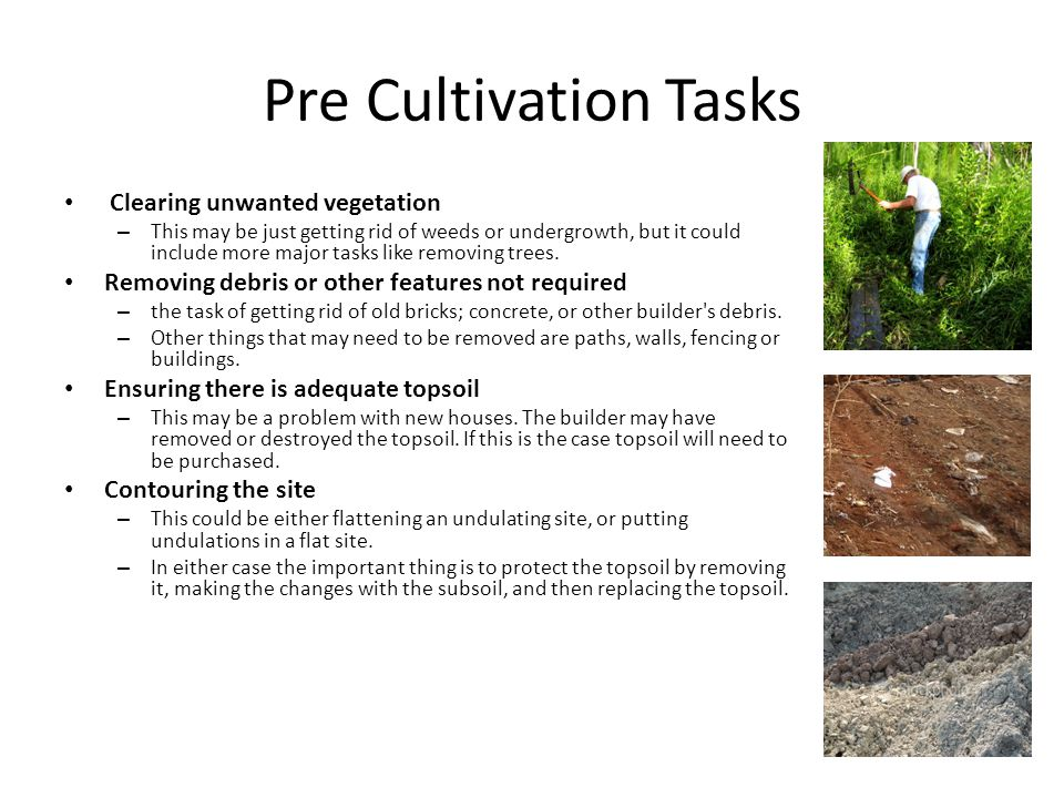 Pre Cultivation Tasks Clearing unwanted vegetation – This may be just getting rid of weeds or undergrowth, but it could include more major tasks like removing trees.