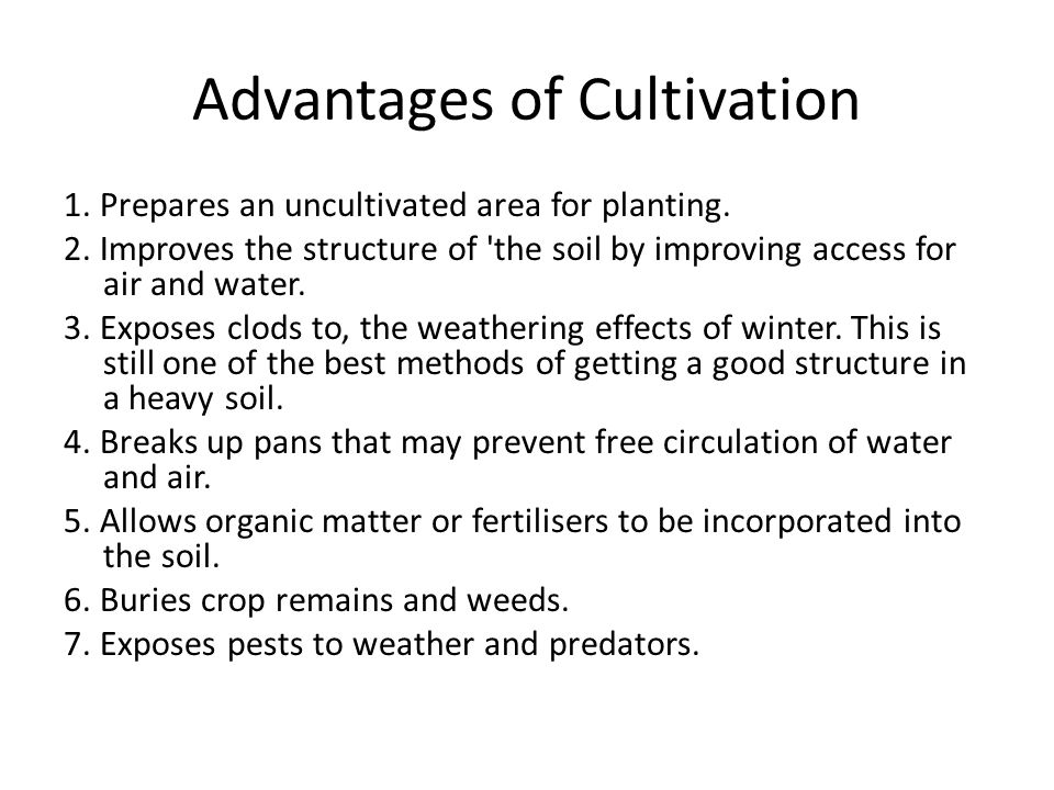 Advantages of Cultivation 1. Prepares an uncultivated area for planting.