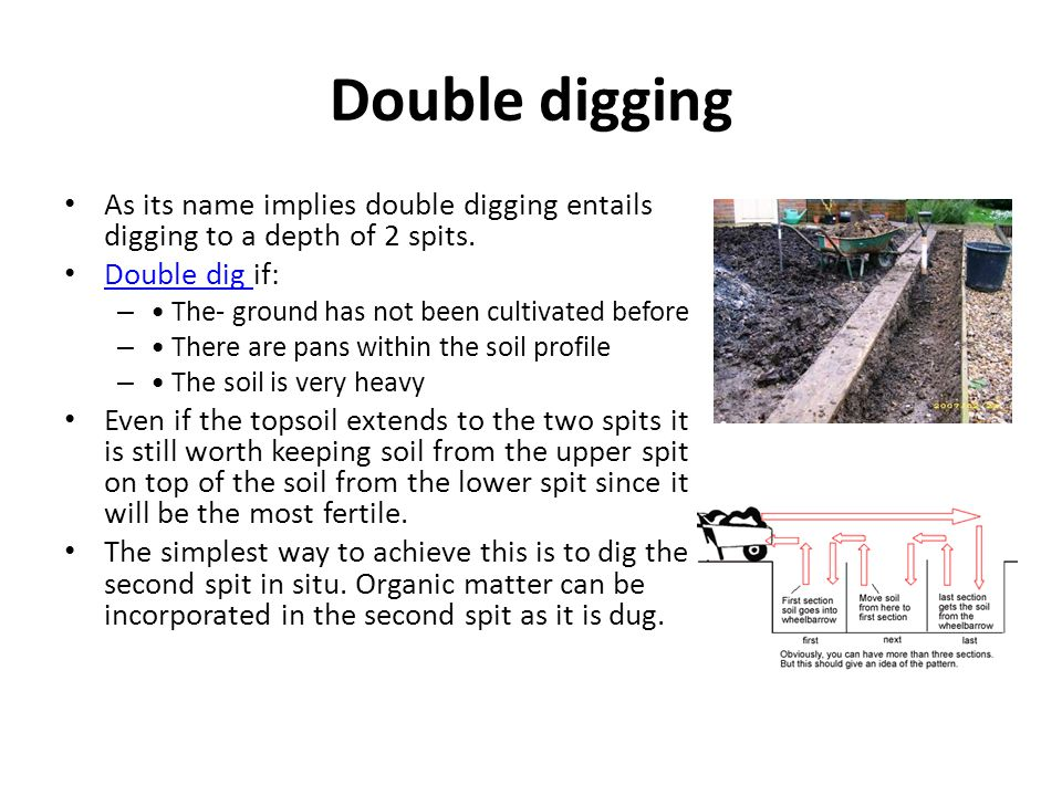 Double digging As its name implies double digging entails digging to a depth of 2 spits. Double dig if: Double dig – The- ground has not been cultivat