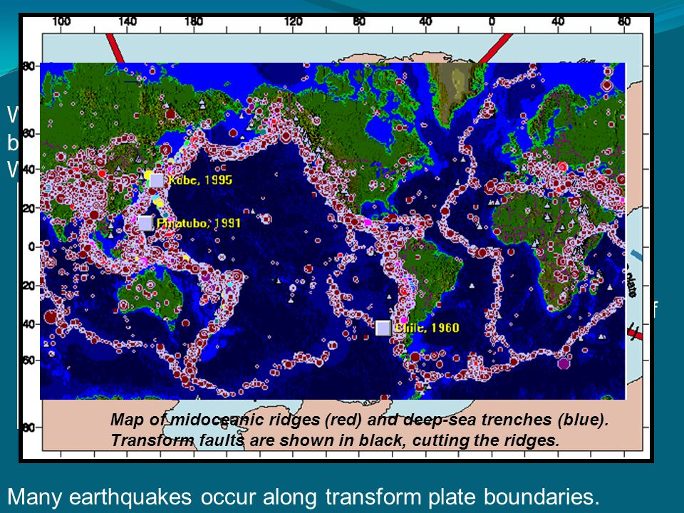 Three types of transform faults: Ridge-ridge Ridge-trench Trench-trench are by far the most abundant.
