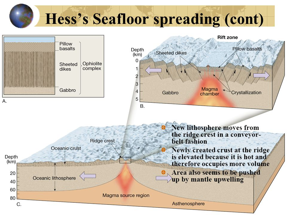 Hess's Seafloor spreading (cont) New lithosphere moves from the ridge crest in a conveyor- belt fashion Newly created crust at the ridge is elevated because it is hot and therefore occupies more volume Area also seems to be pushed up by mantle upwelling