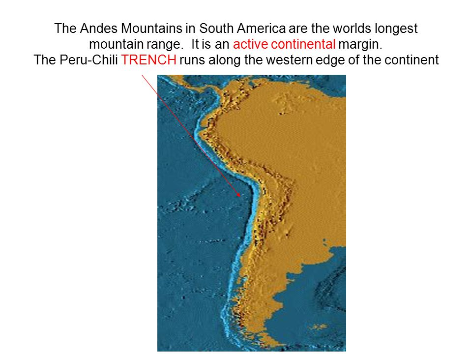 The Andes Mountains in South America are the worlds longest mountain range. It is an active continental margin. The Peru-Chili TRENCH runs along the w