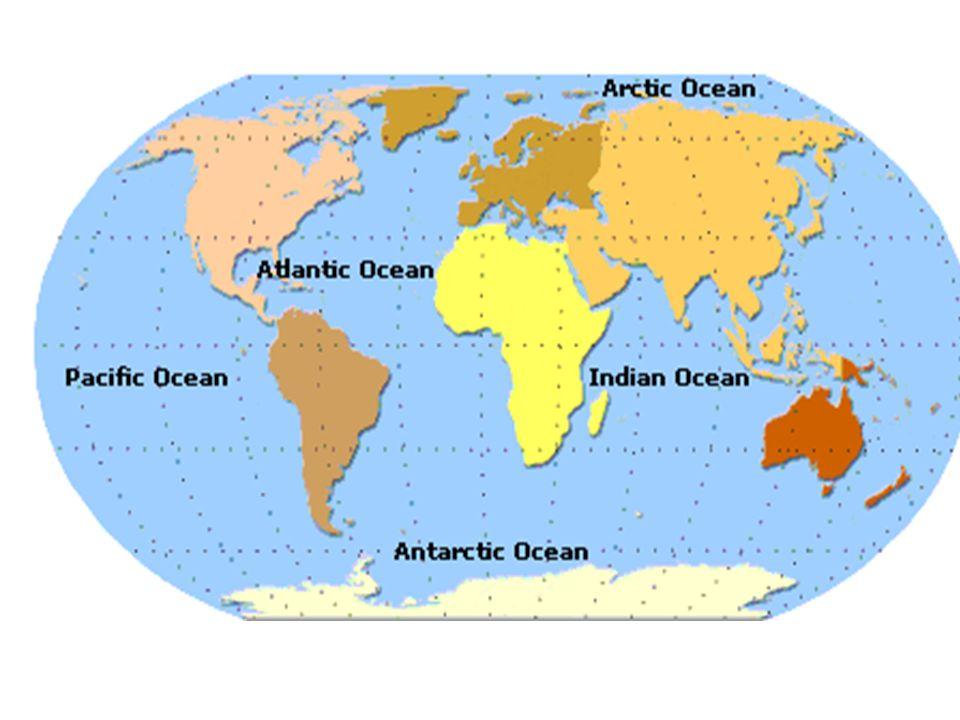 Thousands of seamounts dot the ocean floor.