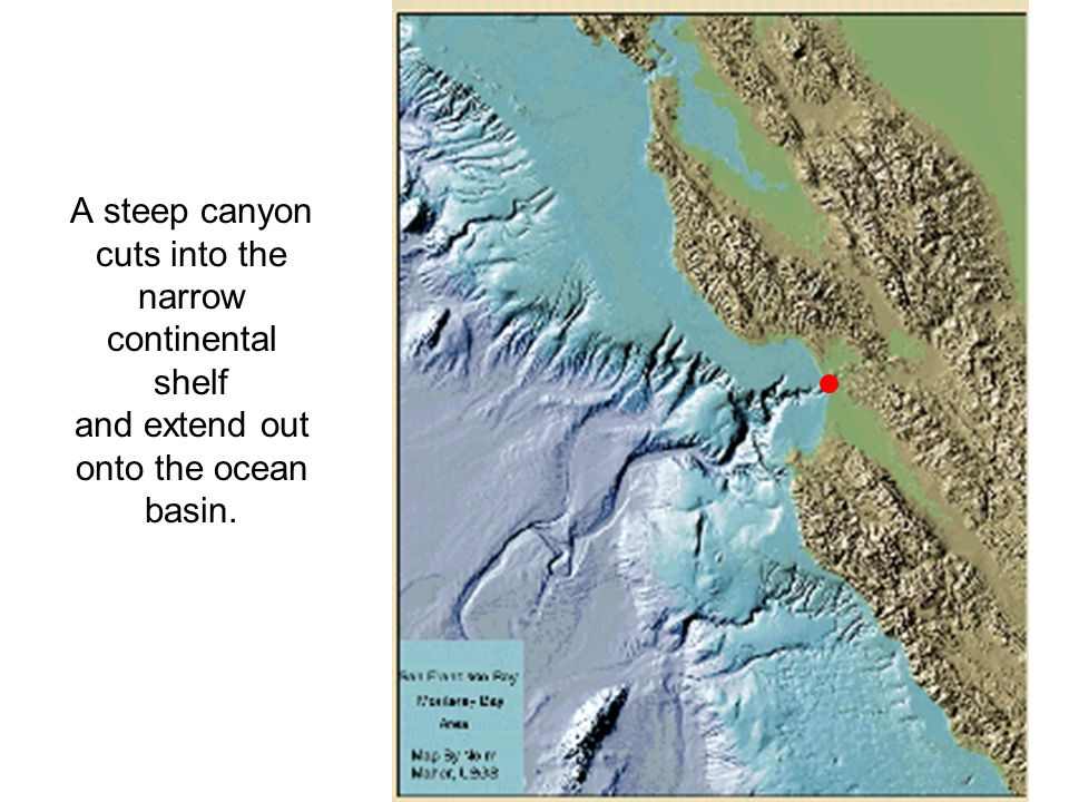 A steep canyon cuts into the narrow continental shelf and extend out onto the ocean basin.