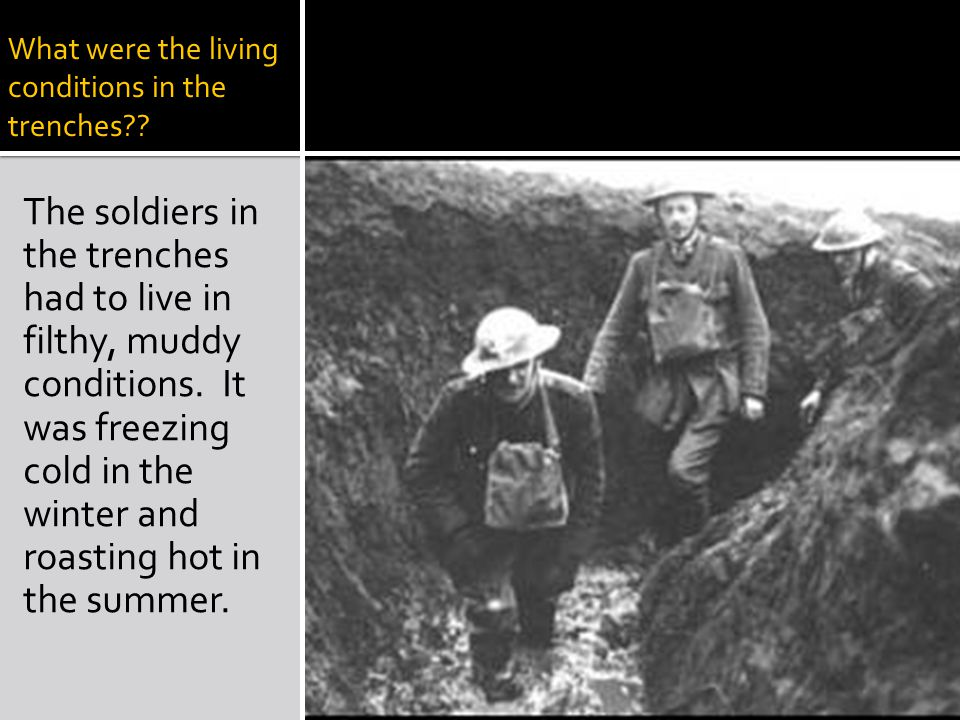 What were the living conditions in the trenches .