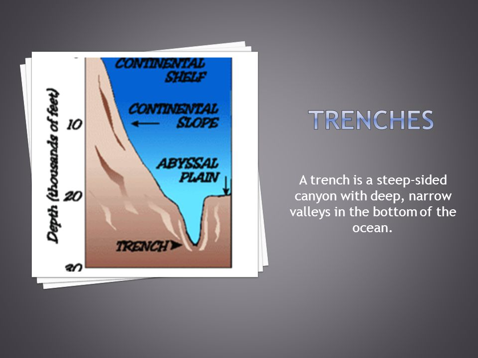 A trench is a steep-sided canyon with deep, narrow valleys in the bottom of the ocean.