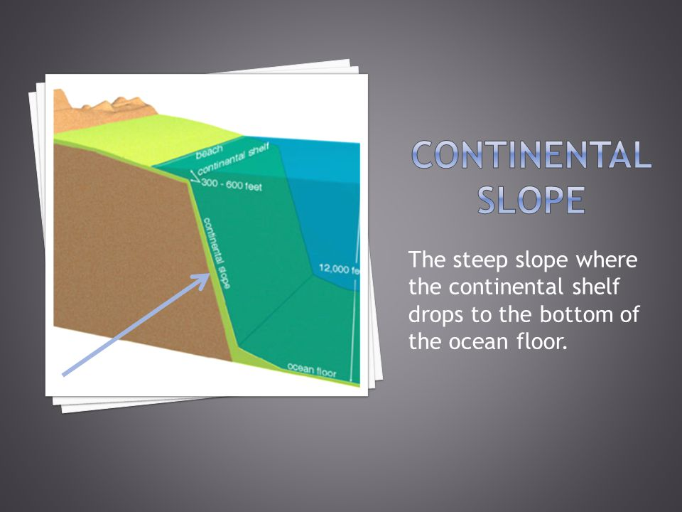  On the bottom of the ocean, there is a central ridge (or mountain range) that divides the ocean floor into two parts.
