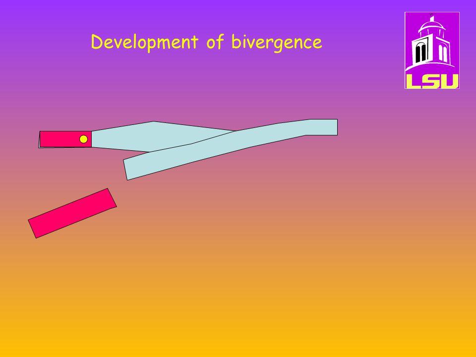 Development of bivergence