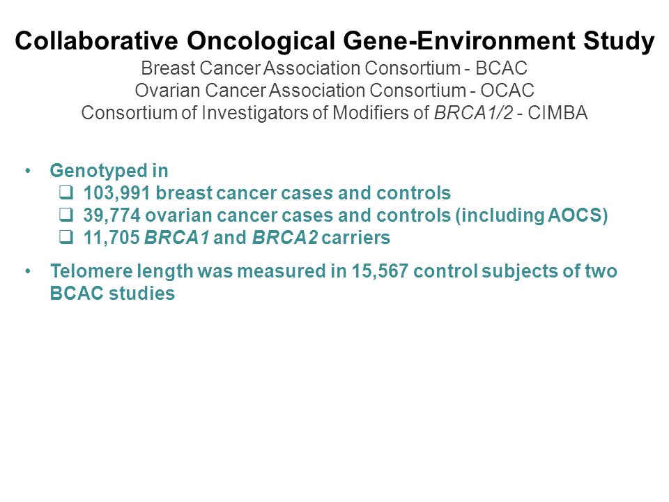 Collaborative Oncological Gene-Environment Study Breast Cancer Association Consortium - BCAC Ovarian Cancer Association Consortium - OCAC Consortium of Investigators of Modifiers of BRCA1/2 - CIMBA Genotyped in  103,991 breast cancer cases and controls  39,774 ovarian cancer cases and controls (including AOCS)  11,705 BRCA1 and BRCA2 carriers Telomere length was measured in 15,567 control subjects of two BCAC studies