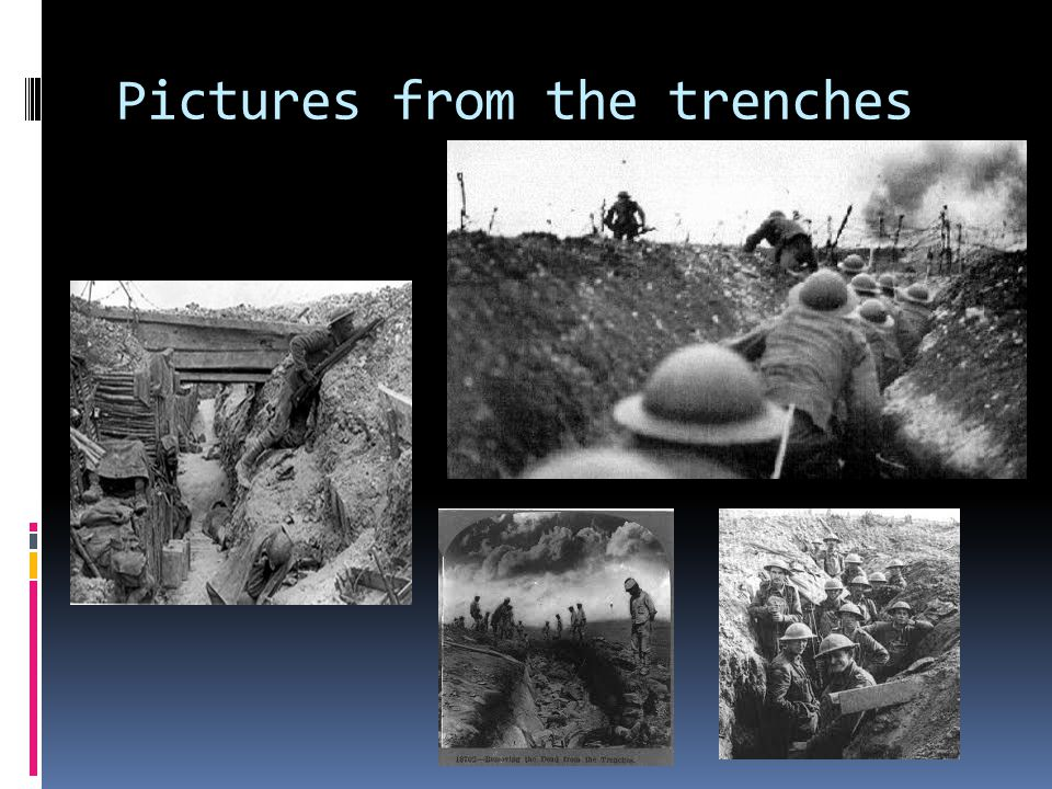 Study Section  The Christmas truce. Shell-shock.