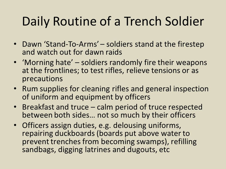 Daily Routine of a Trench Soldier Dawn 'Stand-To-Arms' – soldiers stand at the firestep and watch out for dawn raids 'Morning hate' – soldiers randoml
