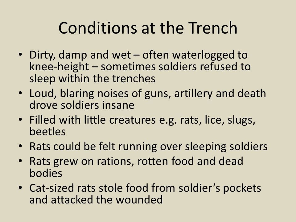 Conditions at the Trench Dirty, damp and wet – often waterlogged to knee-height – sometimes soldiers refused to sleep within the trenches Loud, blarin