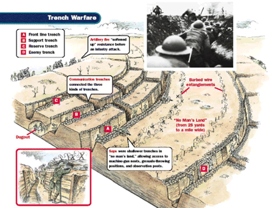 Trench Warfare Both sides dug deep Trenches along the front Both sides dug deep Trenches along the front – Trenches along the front provided protectio