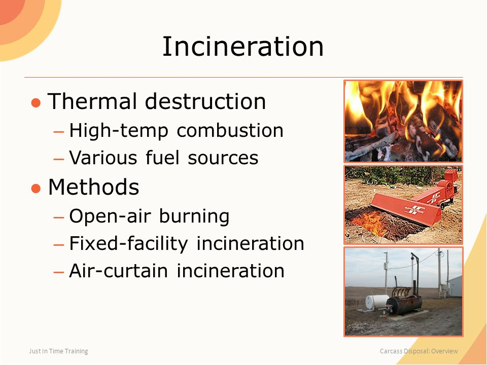Incineration ●Thermal destruction – High-temp combustion – Various fuel sources ●Methods – Open-air burning – Fixed-facility incineration – Air-curtain incineration Just In Time Training Carcass Disposal: Overview