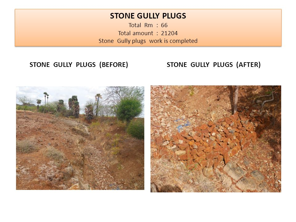 STONE GULLY PLUGS Total Rm : 66 Total amount : 21204 Stone Gully plugs work is completed STONE GULLY PLUGS (BEFORE) STONE GULLY PLUGS (AFTER)